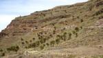 La Gomera - Mirador el Palmarejo
