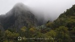 La Gomera - Subtropische Vegetation hinter Mulagua