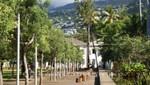 La Réunion - Le Jardin de l' Etat - Baumallee