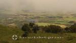 La Réunion - Blick auf das Hochplateau Plaine des Cafres