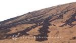 La Réunion - Erkaltete Lavaströme am Piton de la Fournaise