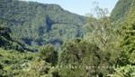 La Réunion - Im Tal von Salazie