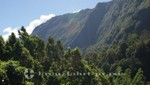 La Réunion - Natur pur im Tal von Salazie