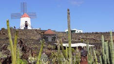 Jardín de Cactus - die Gofio-Mühle