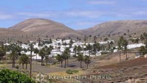 Die Palmenstadt Haría