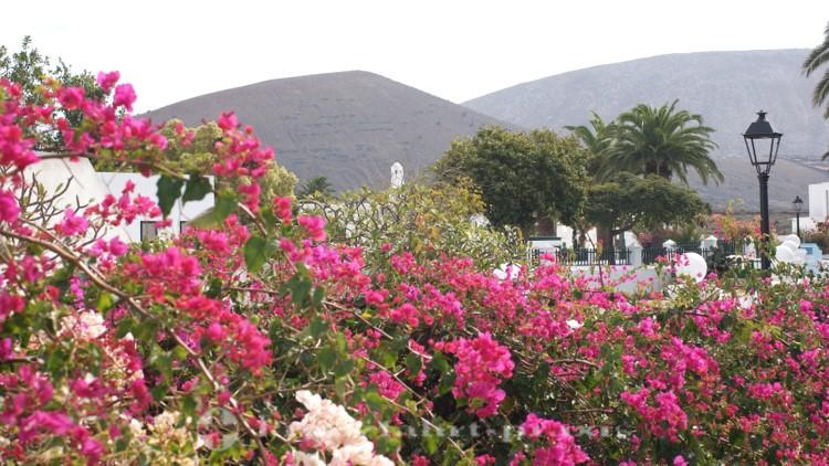Lanzarote - Yaiza