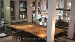 Mancha Blanca - Centro de Visitantes - Ausstellungsbereich