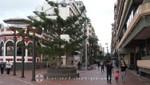 Las Palmas - Calle Luis Morote