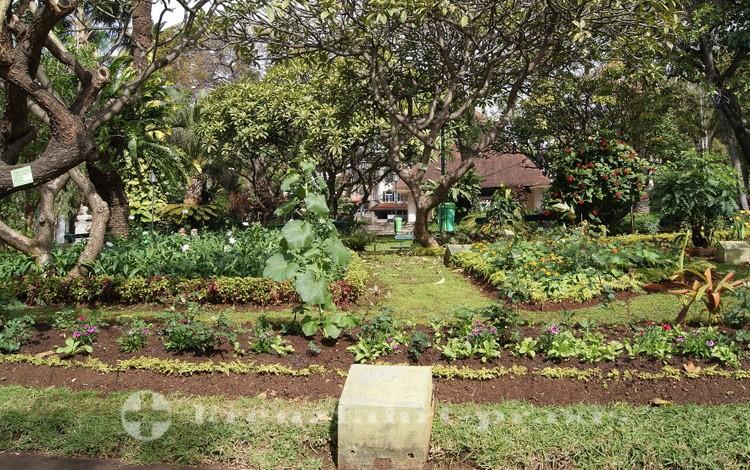 Öffentliche Gartenanlage in Funchal