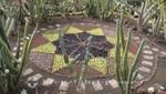 Jardim Botânico - Windrose
