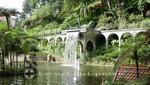 Jardim Tropical Monte Palace - Teichanlage mit Wasserfall