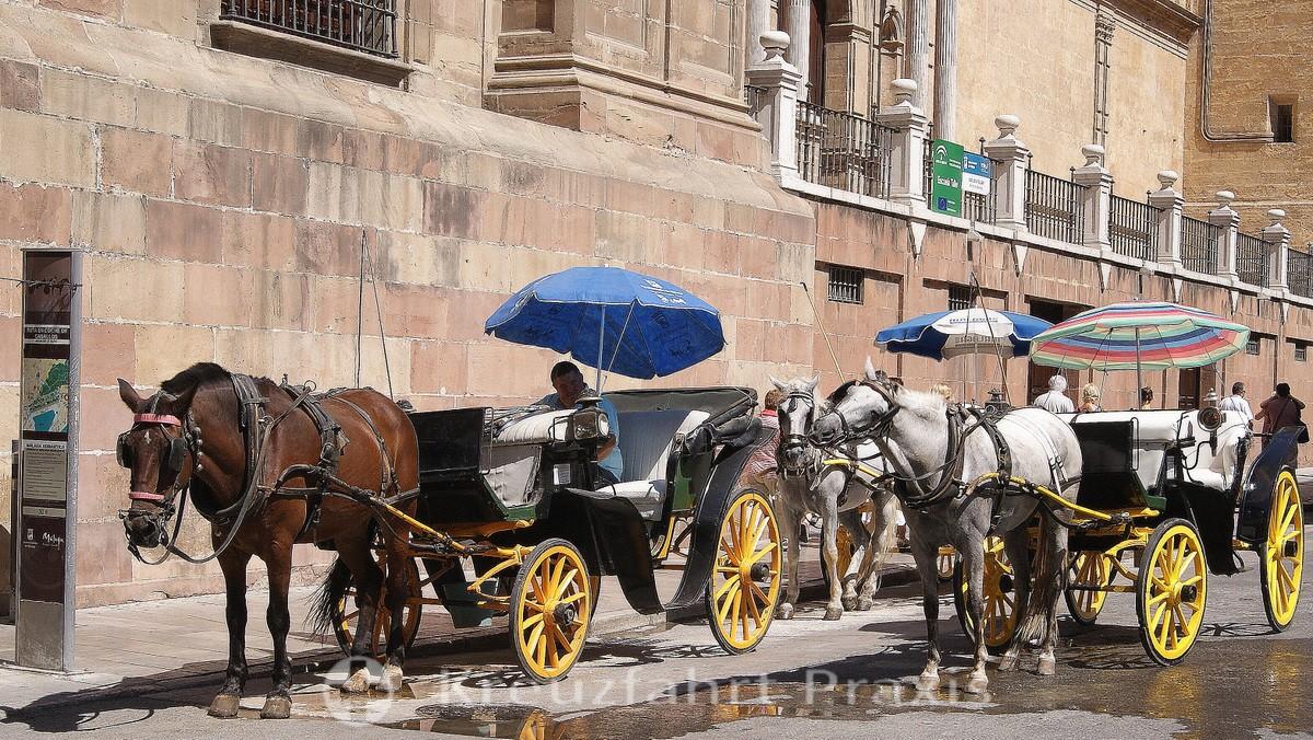 Málaga - cabs waiting