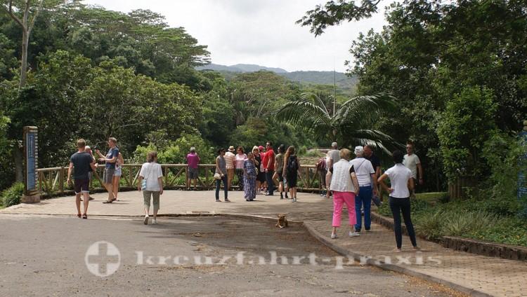 Mauritius - Aussichtspunkt am Chamarell Wasserfall
