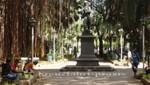Mauritius - Port Louis - Les Jardins de la Compagnie mit Statue