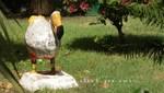 Mauritius - Port Louis - Mauritius Institute - Dodo