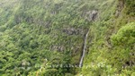 Mauritius - Wasserfall im Black River Gorges Nationalpark