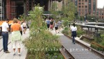 New York - Rush Hour auf der New York Highline