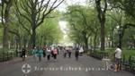 New York - Sonntags im Central Park