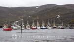 Fischerboote in Skarsvåg