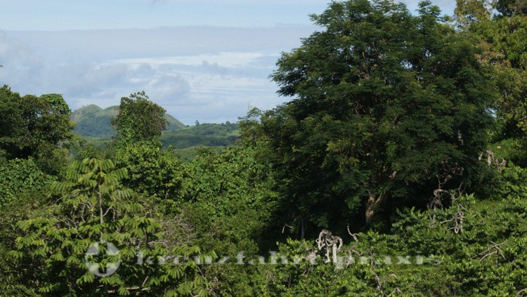 Madagaskar - Nosy Be - Hinterland von Andoany