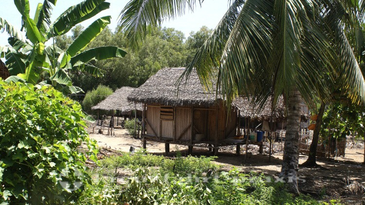 Madagaskar - Nosy Be - Ampasipohy im Lokobe Reservart