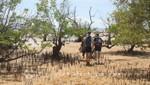 Madagaskar - Nosy Be - Auf dem Weg zur Piroge
