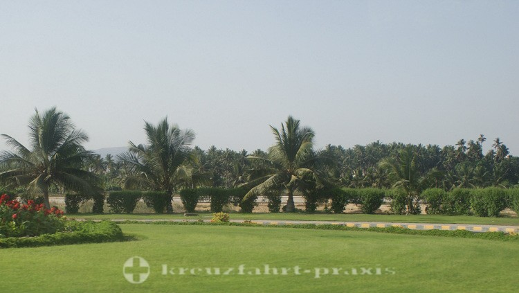 Salalah - Kokosplantagen