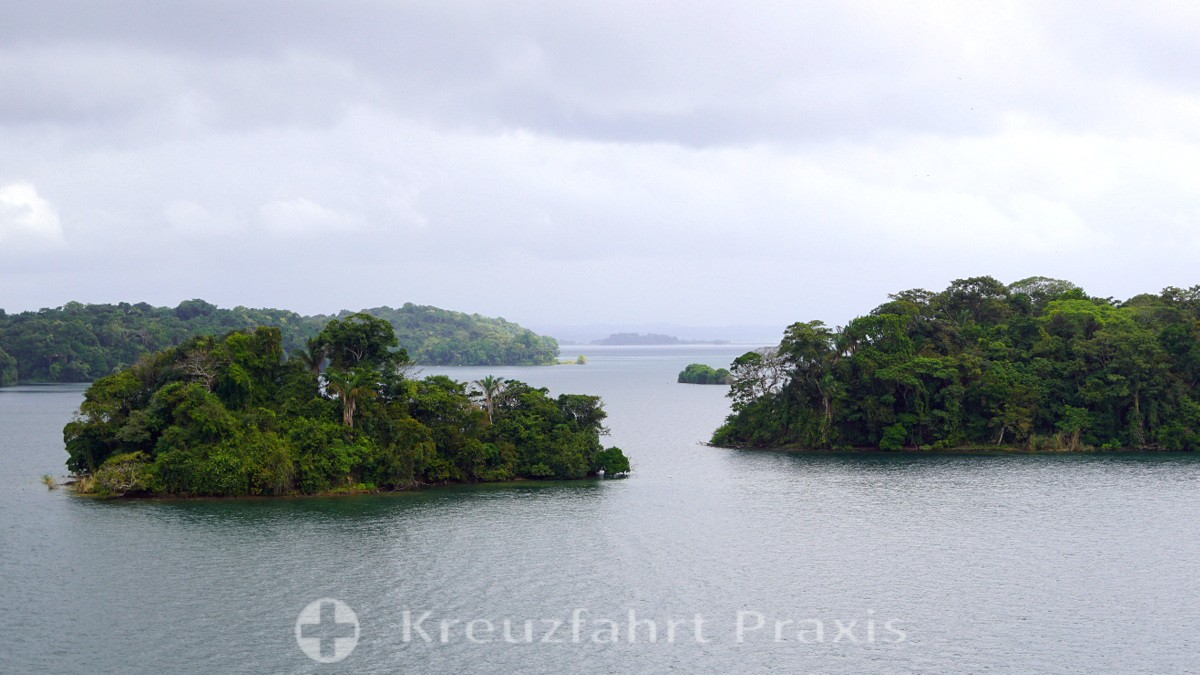 Inseln im Gatúnsee