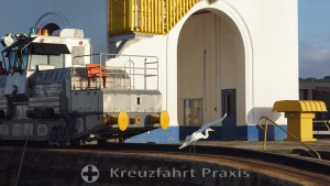 Panama Canal - Miraflores Lock - Locomotive and Heron