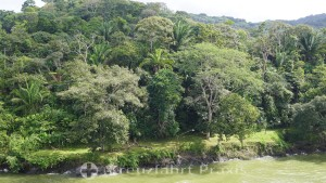 Panama Canal - tropical paradise canal zone
