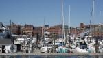 Portland - Sportboote und Yachten en masse
