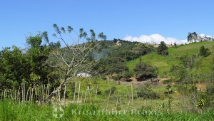 Costa Ricas Hochland