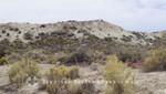Steppenlandschaft