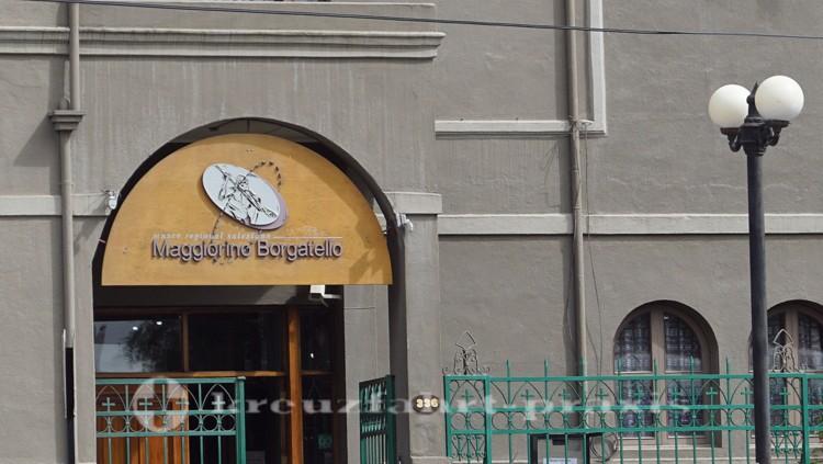 Museo Maggiorino Borgatello