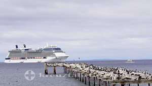 Celebrity Eclipse vor Punta Arenas