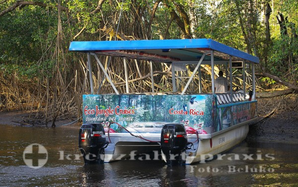 Puntarenas - Eco Jungle Cruises am Rio Tárcoles