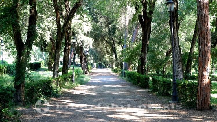 Villa Borghese - Viale del Museo Borghese