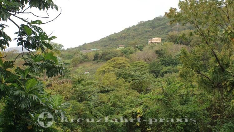 St- Kitts - Ehemalige Zuckerrohrplantage bei Wingfield Estate