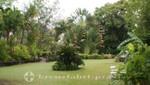 St. Kitts - Wingfield Estate - Parkanlage