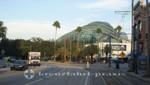 Das Tampa Aquarium