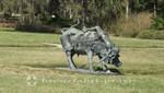 Sarasota - Skulptur im Park des State Art Museum of Florida