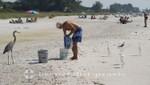 Bradenton Beach - Es gibt etwas zu essen