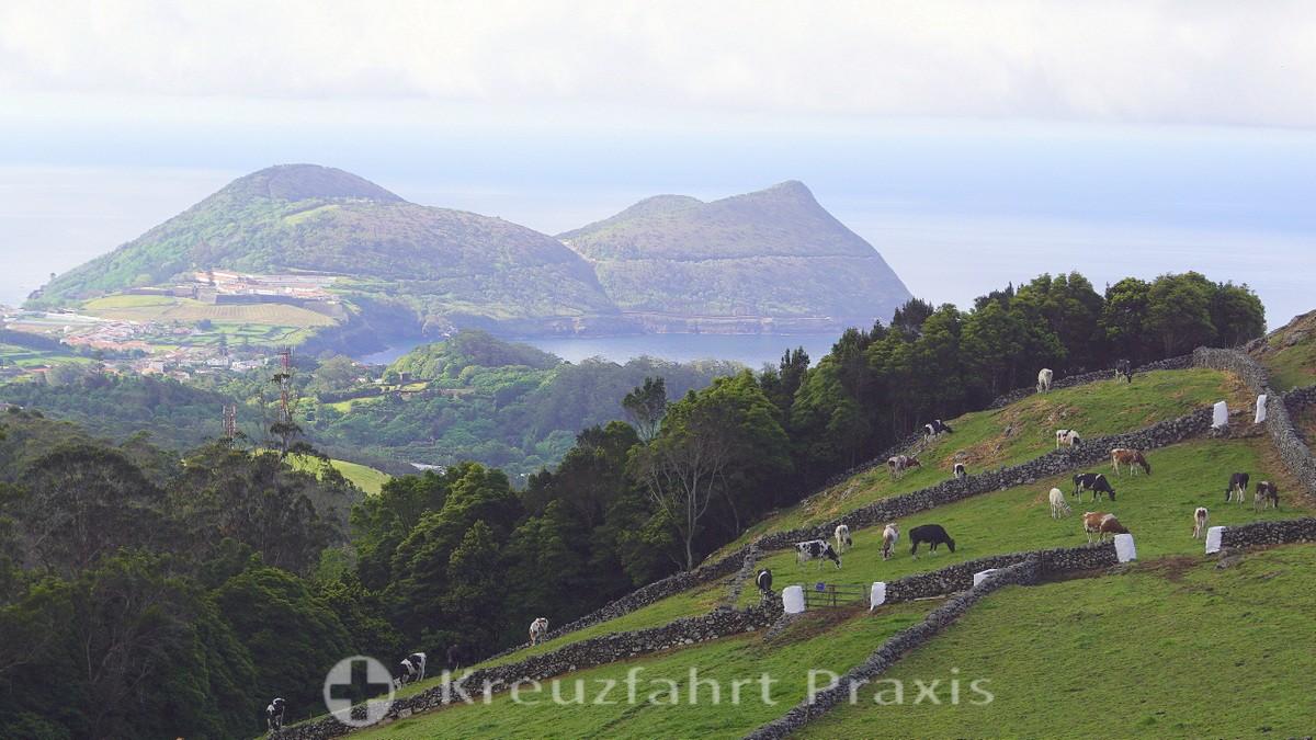 Terceira / Azores