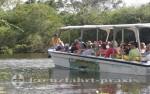 Belize - Flussboot in Aktion