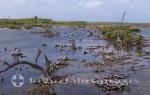 Cozumel - Colombia Lagune