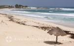 Cozumel - Strand an der Ostküste