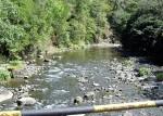 Dominica - Gebirgsfluss