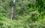 Dominica - Wasserfall im Morne Trois Pitons Nationalpark