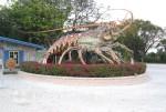 Florida Keys - Islamorada Künstlerdorf