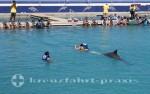 Grand Cayman - Zweifelhaftes Vergnügen